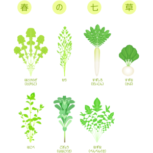 七草の種類とその意味について
